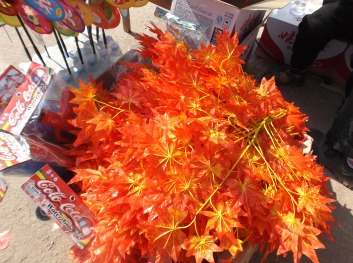 Buy your red leaves here
