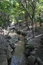 Path in Nara