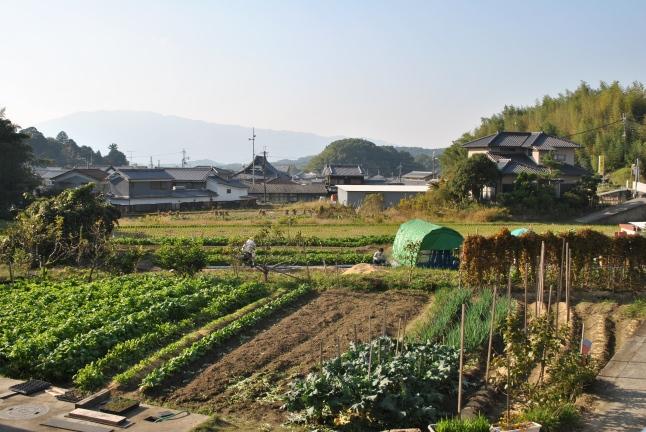 Japanese farm, Takatori