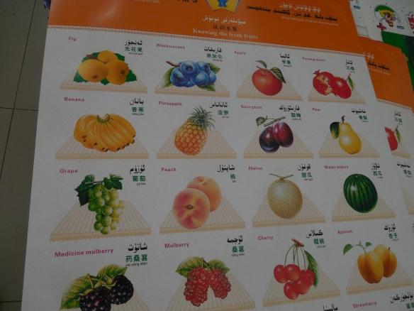 Bilingual Mandarin & Uighur
