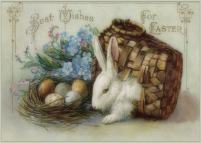 Easter-Bunny-card