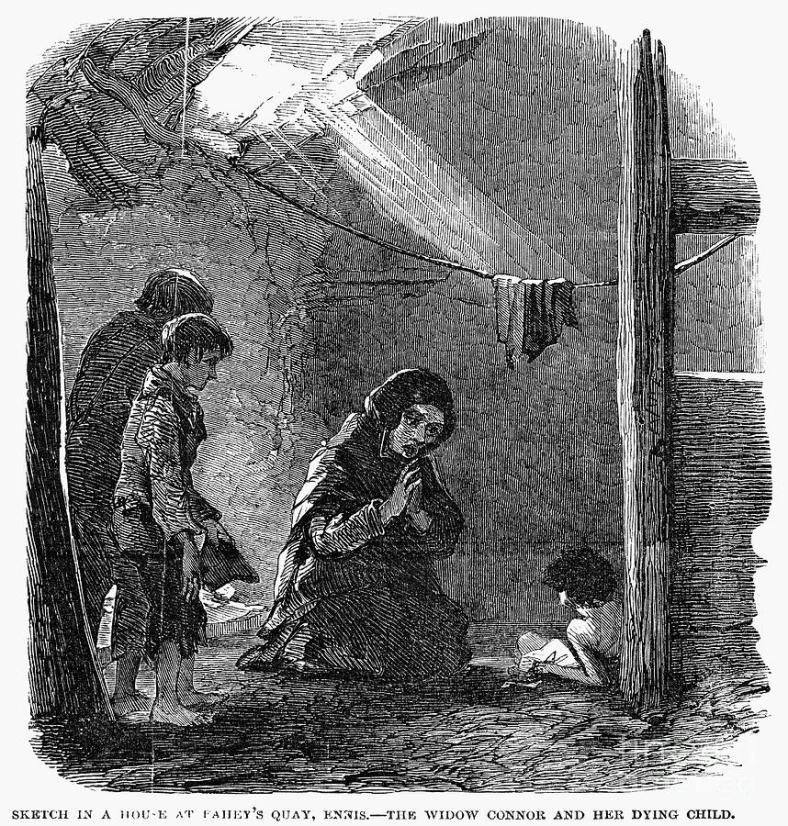 irish-potato-famine-1846-47-granger