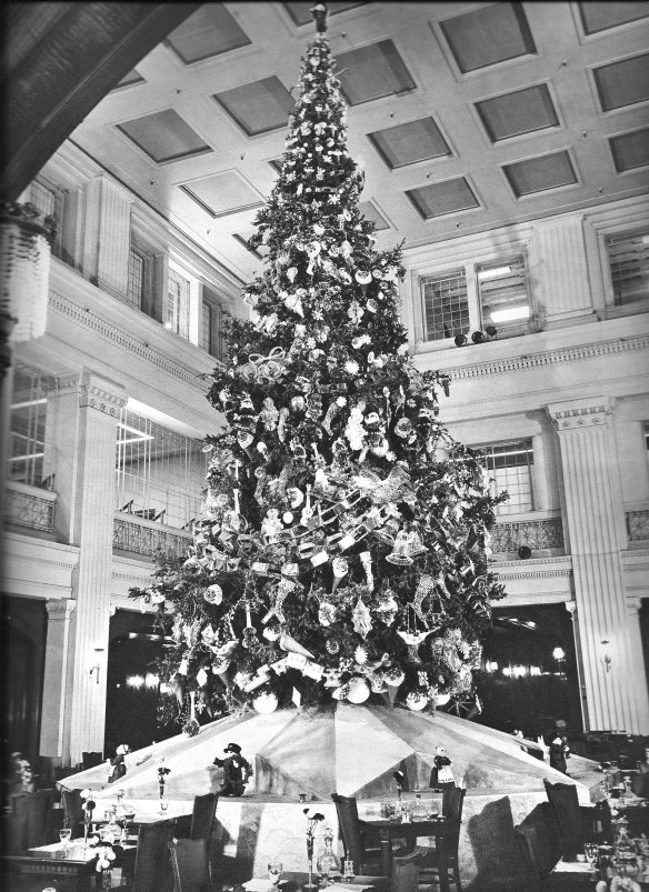 1951_walnut_room_tree_jpg