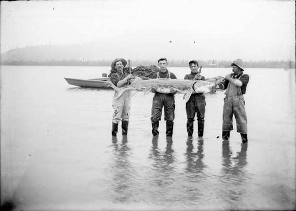 4 fishermen a1fa_z