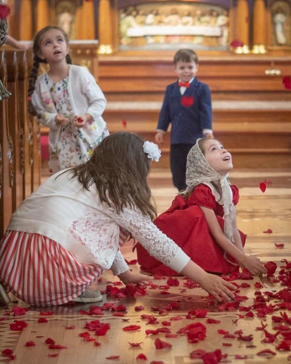 Pentecost roses c